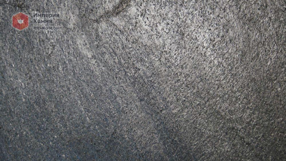 ornithoctonus sp silver grey фото